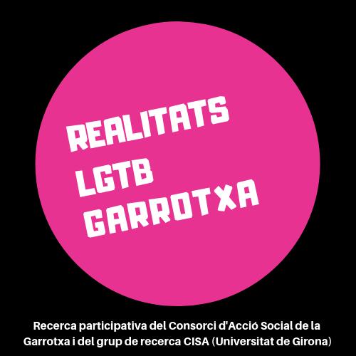 Trobada grup motor recerca realitats LGTB