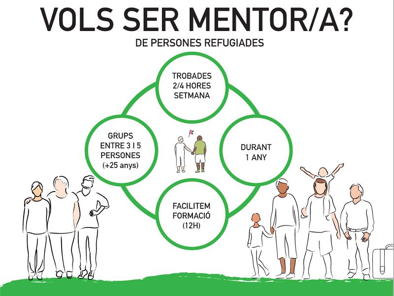 Vols ser mentor-ra